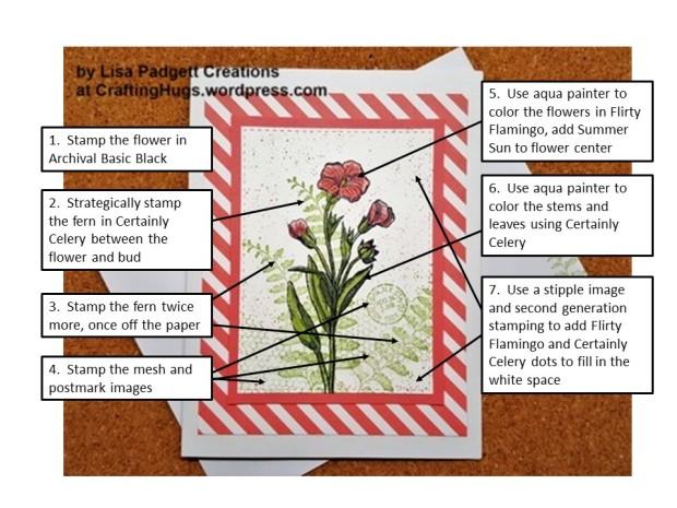 Blog Photo Image notes - butterfly basics