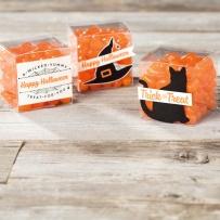 xx spooky night treat minim treat boxes
