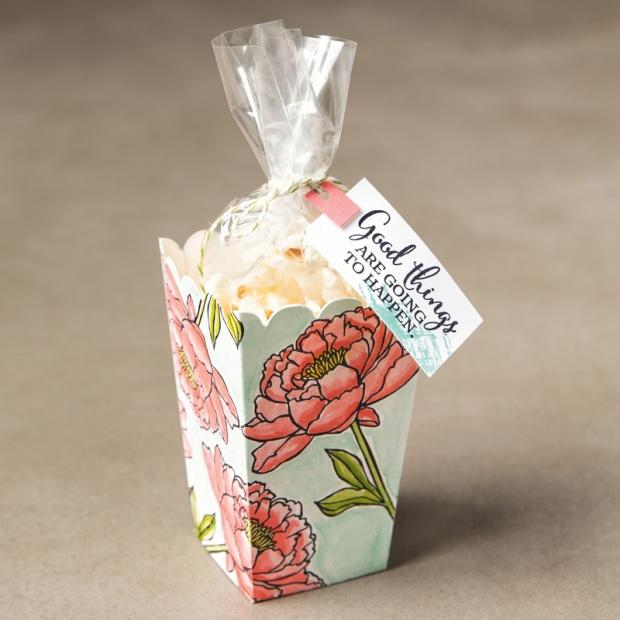 packaging - popcorn box thinlit feminine