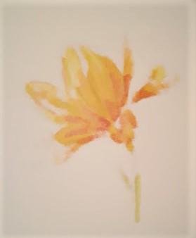 remarkable you blends one flower back