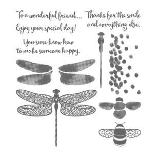 dragonfly dreams catalog