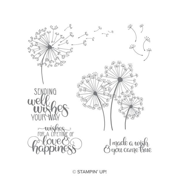 dandelion wishes catalog image