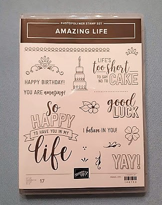 amazing life stamp set