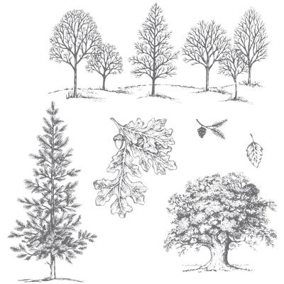 lovely as a tree catalog