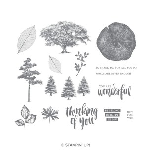 rooted in nature catalog