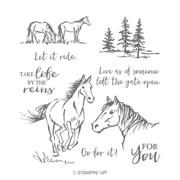 let it ride catalog.jpg