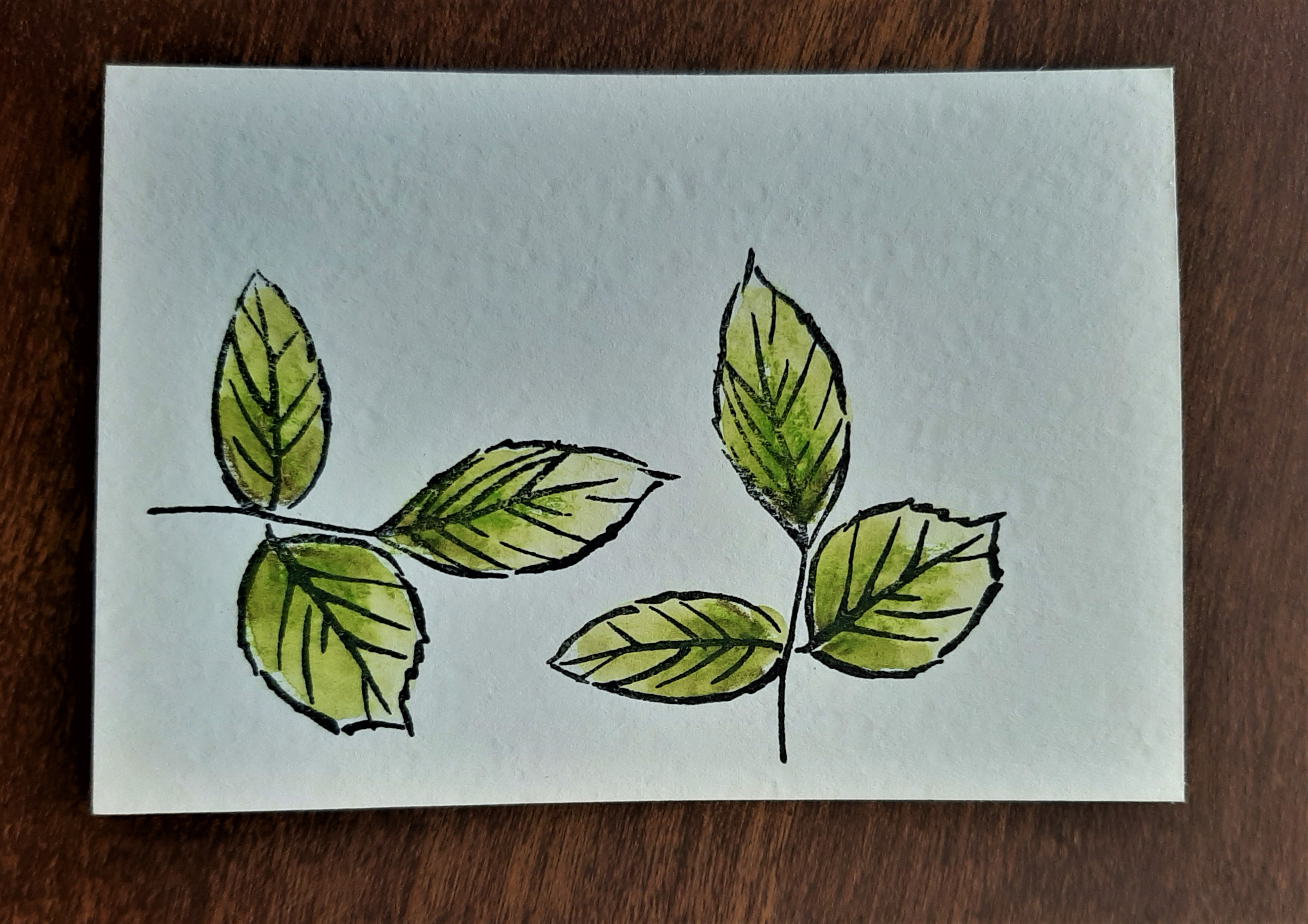 watercolor tip - to a wild rose leaves